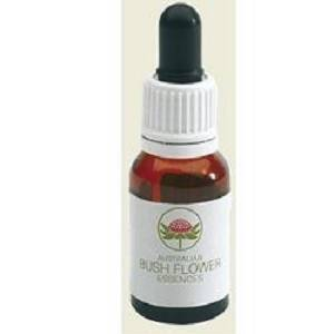 DOG ROSE AUSTRALIAN 15ML