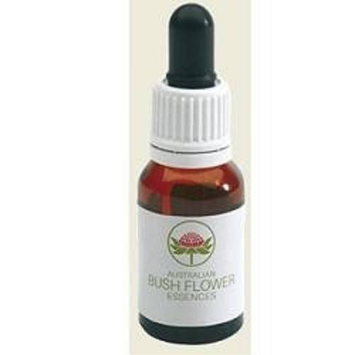 AUTUMN LEAVES GOCCE 15ML
